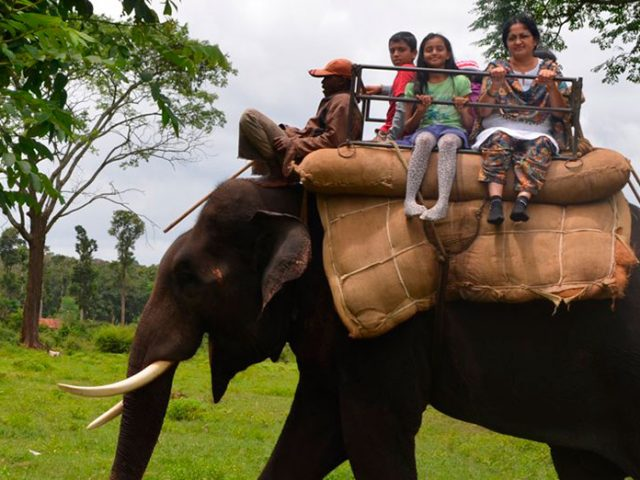 https://www.karnatakatravel.com/wp-content/uploads/2019/11/weekend_with_elephant-640x480.jpg